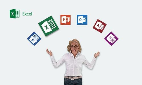 Excel 2013, Experte